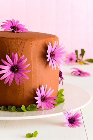 Layer-cake-de-chocolate-y-fresas-1-300