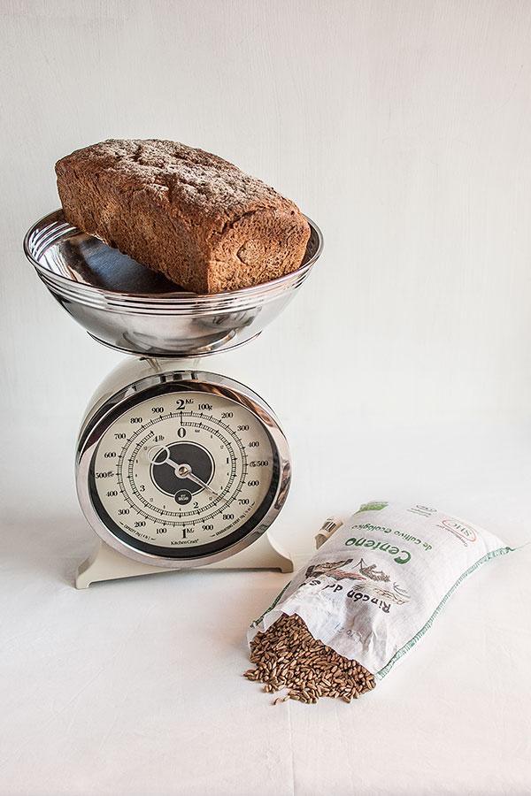 Escaldado para pan de centeno