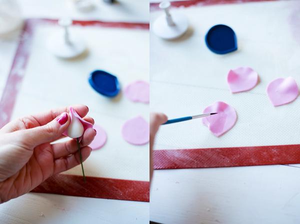 petalos-rosa-azucar