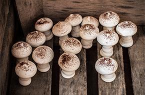 Merengues III: cómo hacer merengue suizo