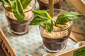 Pudding de chocolate en vasitos
